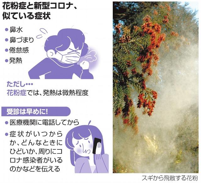コロナ と 花粉 症 の 違い
