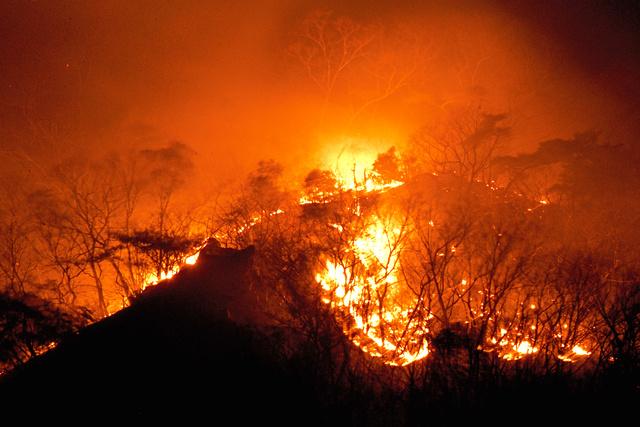 足利 の 山 火事