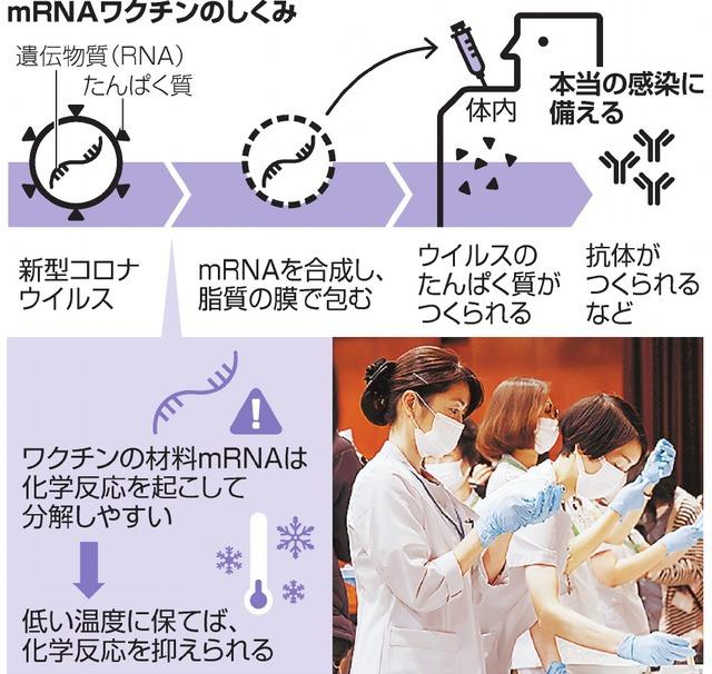 mRNAワクチンのしくみ