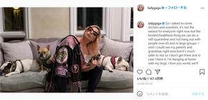 歌手のレディー・ガガさんと飼い犬たち=インスタグラムの投稿から