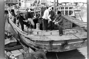 帰港した第五福竜丸=1954年3月、静岡県焼津市