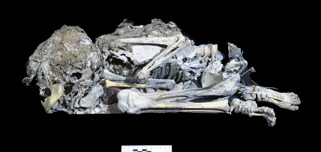 文書 と は 死海 死海文書の謎に新説が浮上