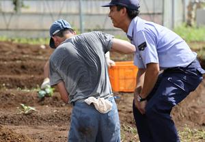 農作業をする少年たちを監督しながら、指導する法務教官。少年と言葉を交わし笑顔を見せた。人間的なかかわりの中で少年たちの成長を見守る(画像の一部にぼかしやモザイク処理をしています)=2020年9月、茨城県牛久市、内田光撮影