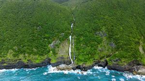 確認された九州最大級の滝。山中から海岸に注いでいる=2020年6月、鹿児島県奄美市、浜田太さん撮影