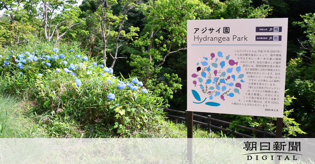 https://www.asahicom.jp/articles/images/c_AS20210607002381_comm.jpg