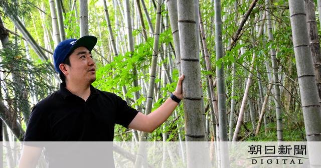 放置竹林解決めざすピリ辛「延岡メンマ」 Uターンの31歳男性企画:朝日新聞デジタル