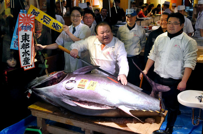 一本釣り 値段 マグロ なぜ「カツオ」や「マグロ」は一本釣りなのか?どんな意味があるの?  