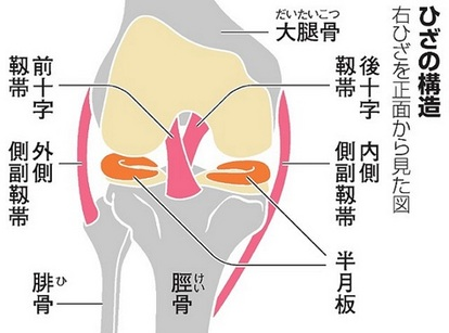 けがの後の私の膝を強化する方法