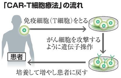 血液がん治療に光、新薬「キムリア」開発の経緯を聞く:朝日新聞デジタル