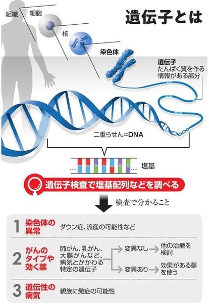 検査 で こと 遺伝子 わかる