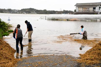 水戸 市 氾濫