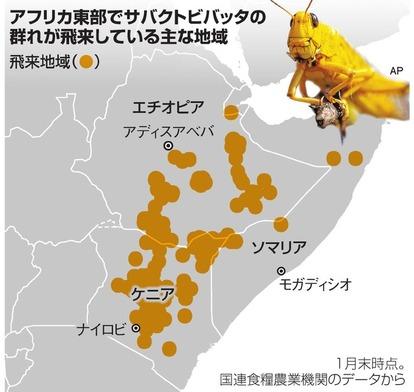 バッタ の 大群 日本