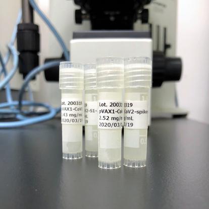 ワクチン ウイルス 新型 いつ コロナ
