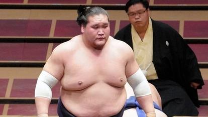 相撲 三 役 と は