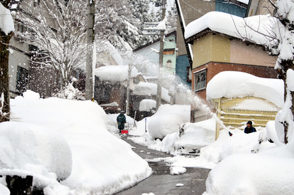 新潟 県 雪 情報