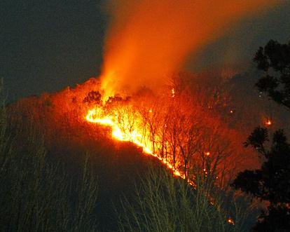 どこ 足利 山 火事