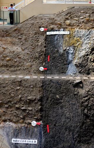 地震断層観察館で保存されている上下に6メートルずれた断層=岐阜県本巣市