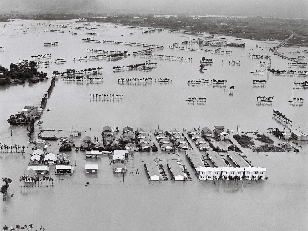 1966年の下越水害で決壊した加治川の仮堤防が完成した。左側が ...
