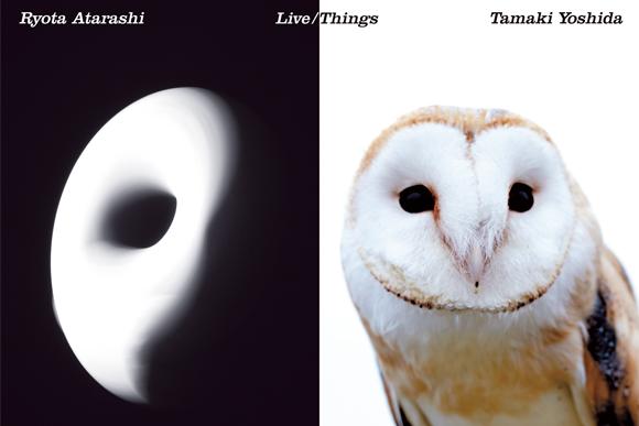 生物とモノの変化と調和 写真展「Live / Things」