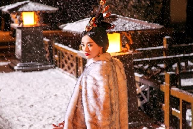 陰謀に満ちた女の戦い 中国人気ドラマがDVDに