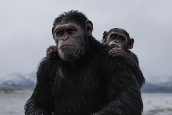 「15分に1回は裏切られる」映画『猿の惑星』の魅力