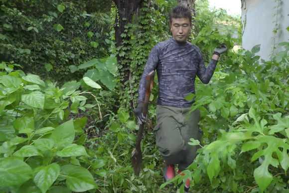 生態系本来の強さを引き出す、ソニーの協生農法