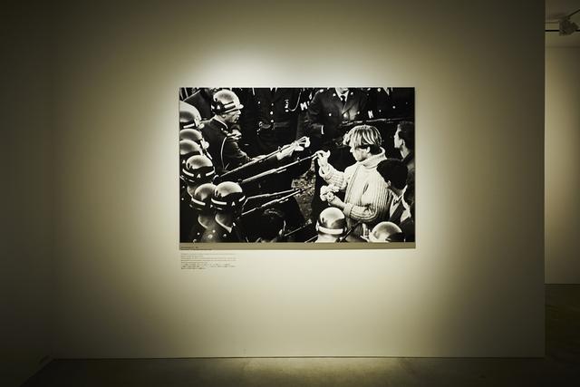 フラワーアーティスト東信さんらの展示会「戦争と花」