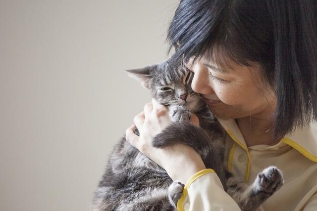 猫イクメンに変身した夫、ツンデレ猫は夫婦のかすがい