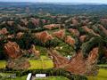 写真特集 北海道地震