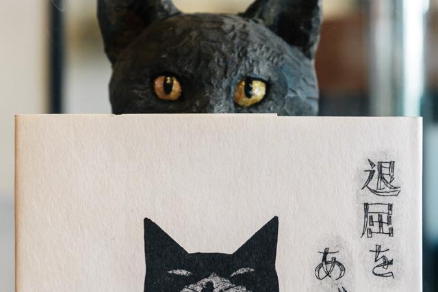 猫という生き物との不思議な暮らし