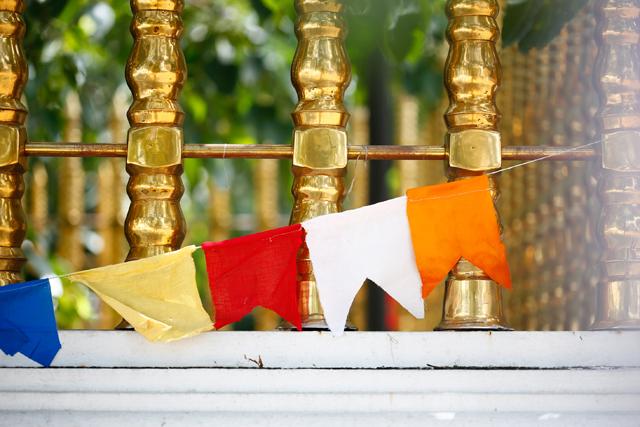 スリランカ名物、2人の占い師を訪問