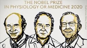 ノーベル医学生理学賞の業績には日本の貢献も大きかった