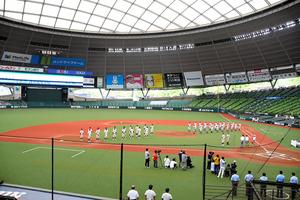 野球 トーナメント 埼玉 県 高校