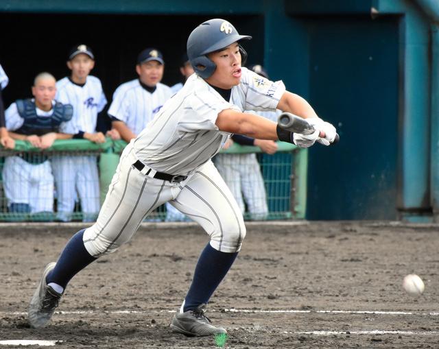京都 高校 野球