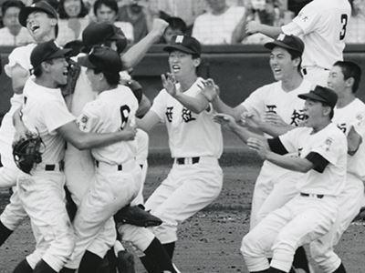 1992年の野球