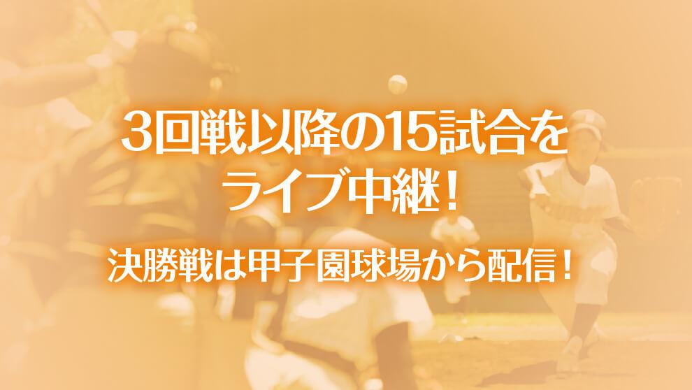 第25回全国高等学校女子硬式野球選手権大会の予定やニュース、ライブ中継をお届けします!