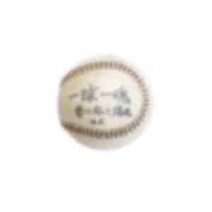 硬式野球ボール/「一球入魂 夢に向かって爆進せよ」とメッセージが書かれている