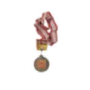 メダル/「第3位 第5回自治労連全国スポーツ大会バレーボール大会」などと書かれている