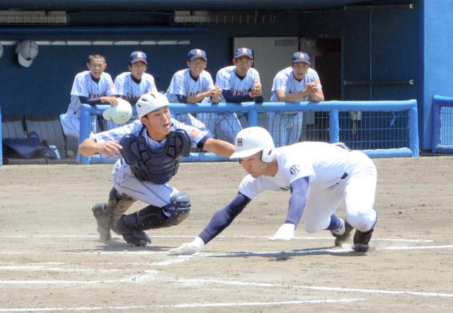 愛知 黎明 高校 野球 部