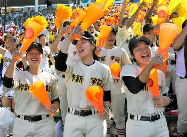 作 新 学院 野球 部 メンバー
