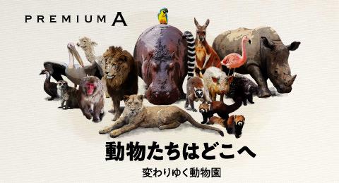 動物たちはどこへ 変わりゆく動物園