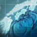 南海トラフ地震の被害想定