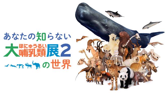 あなたの知らない大哺乳類展2の世界