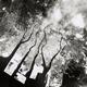 広島の爆心地、鮮明な写真