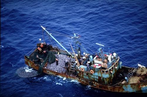 1978年4月15日午前9時ごろ、沖縄県の尖閣列島・魚釣島北15カイリで操業中の中国漁船。12日、尖閣列島周辺に突然、百数十隻の中国漁船が現れ、日本の領海を侵犯した