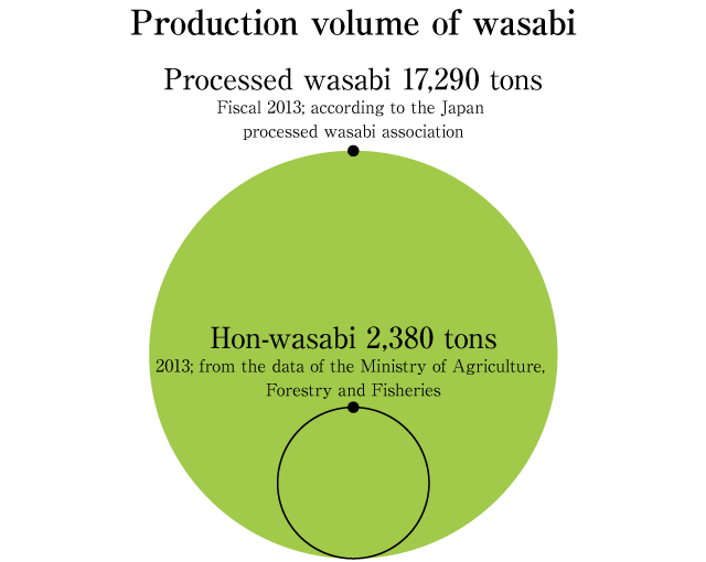 Production volume of wasabi