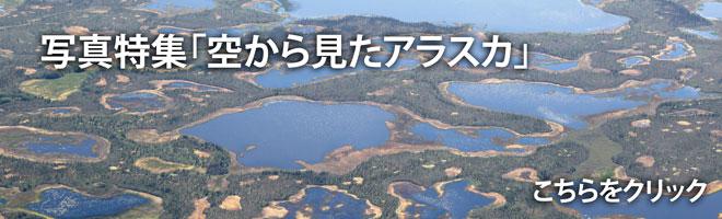 【写真特集】空から見たアラスカ